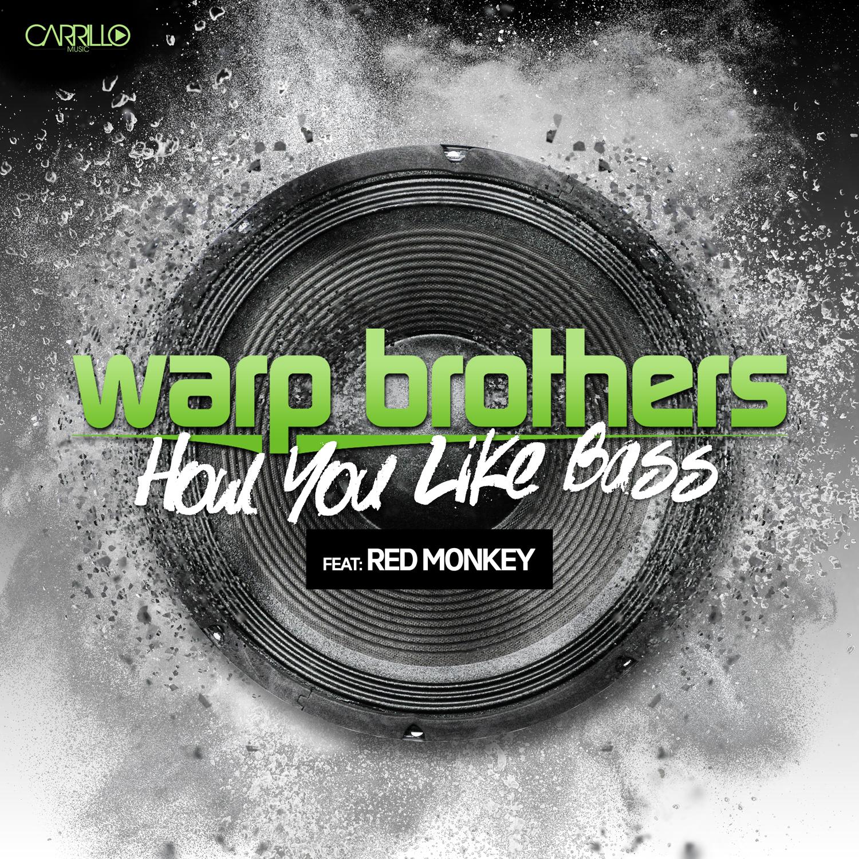 warp-brothers-how-You-like-bass-12x12
